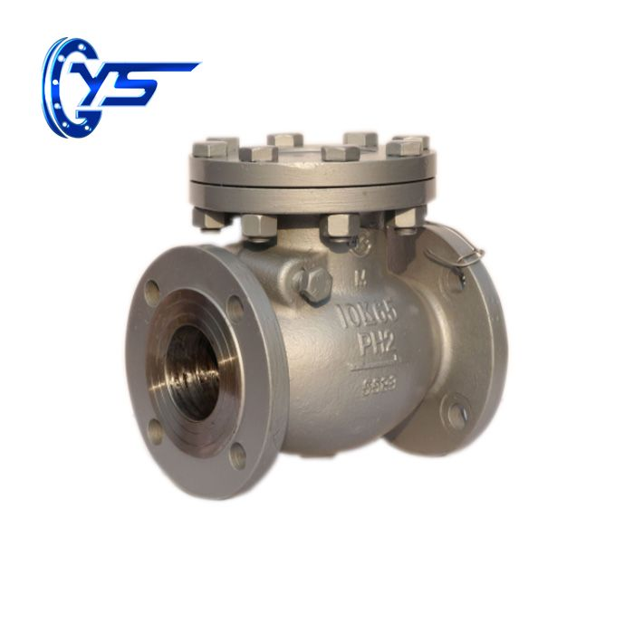 Check Valve: The Most Important Valve In a Process System