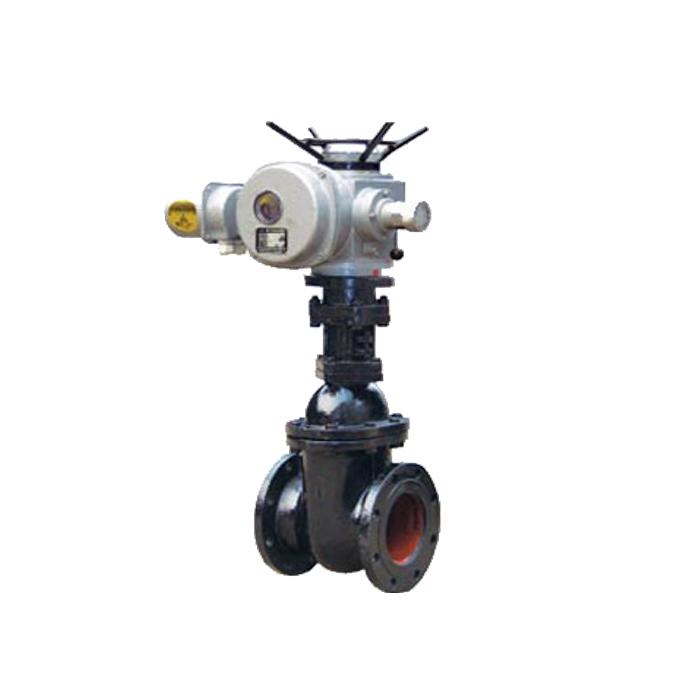 Grey iron Motorized parallel double disc gate valve