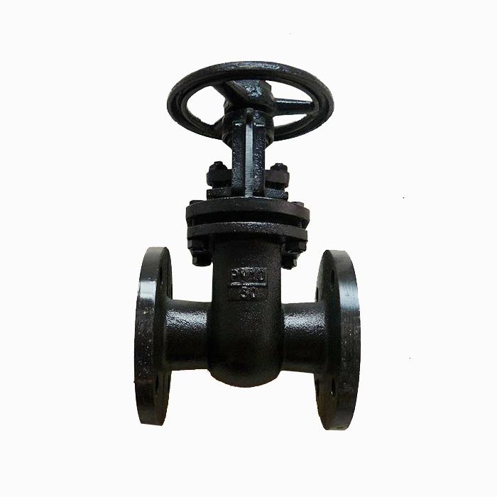Gost standard cast iron double disc gate valve