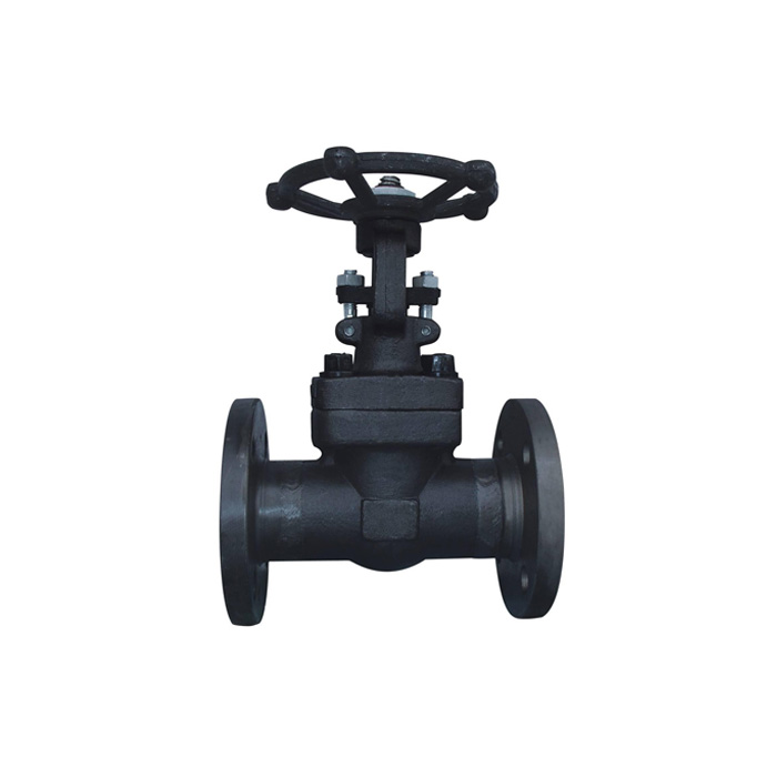Z41H / Y-25 / 40/64/100/160 forged steel flanged gate valve