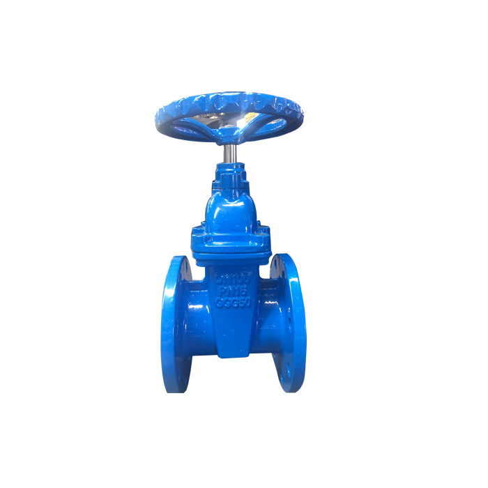 DN 50-300mm BS Non-rising Stem Resilient Soft Seated Gate Valve