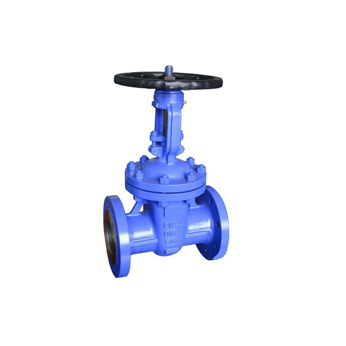 Z41H/W-16/25/40/64 DIN Cast Steel Gate Valve