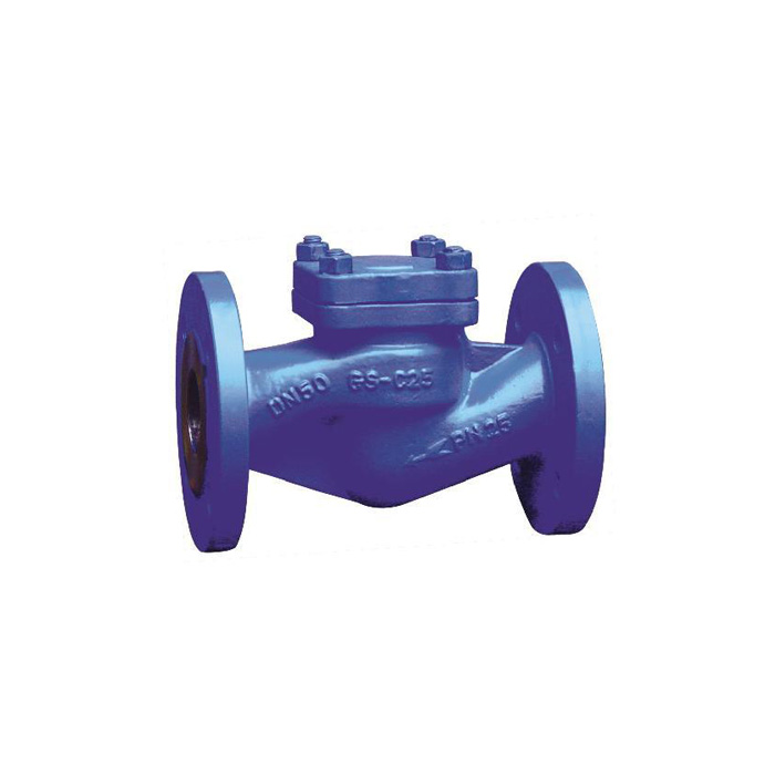 H42H-16/25/40 DIN Lifting Check Valve