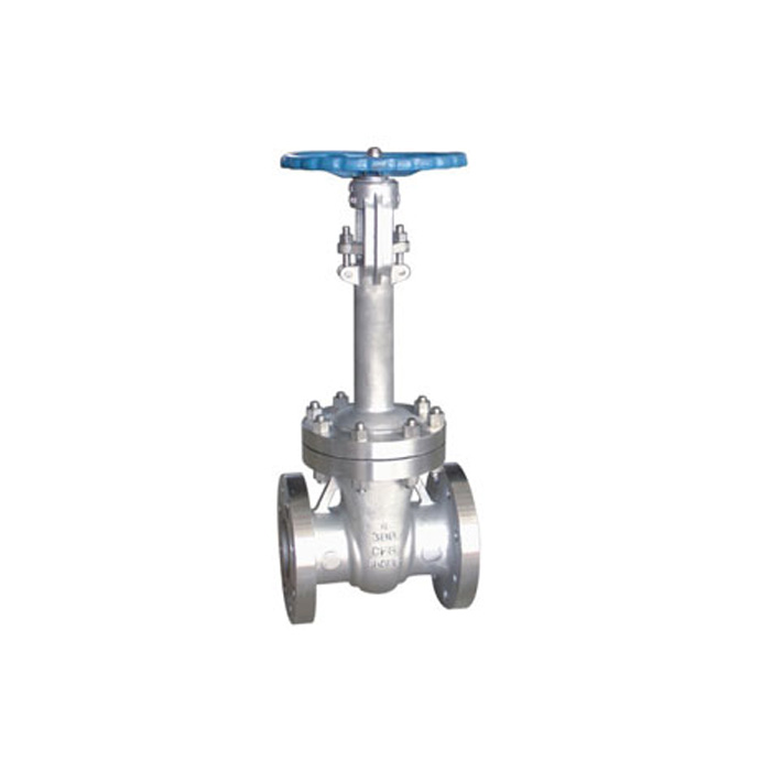 DN 50-1000mm ANSI Low Temperature steel Gate Valve