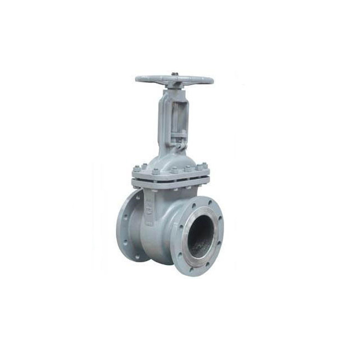 Gost Heavy Type Steel Gate Valve